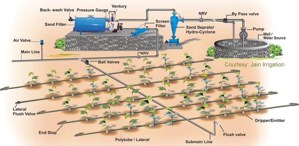 Drip Irrigation Sswm