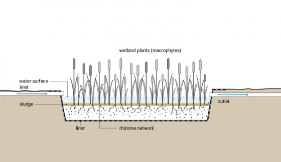 TILLEY et al 2014 Schematic of the Free Water Surface Constructed Wetland